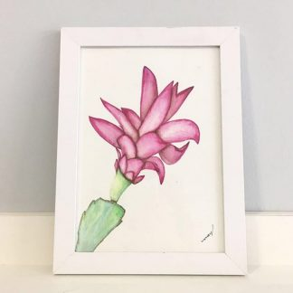 Flor-de-maio pintura de flores de plantas quadrinho com moldura A5 decoração
