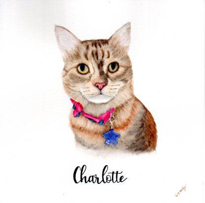 gato aquarela